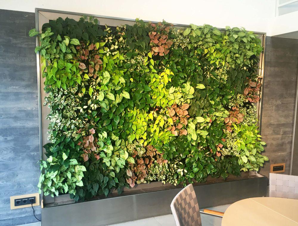 Bepflanzte Wand vertikale begrünung grüne wände